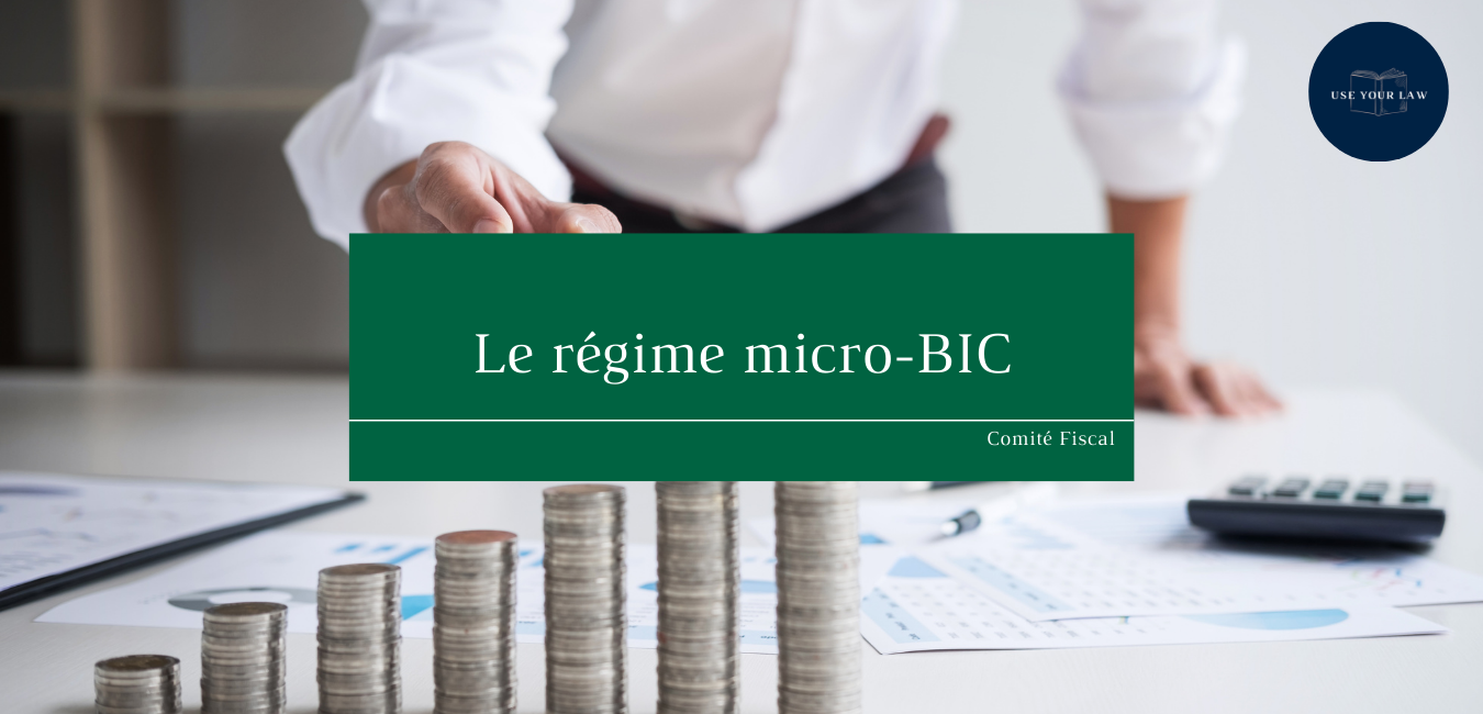 Le régime micro-BIC - une imposition avantageuse pour l'entrepreneur