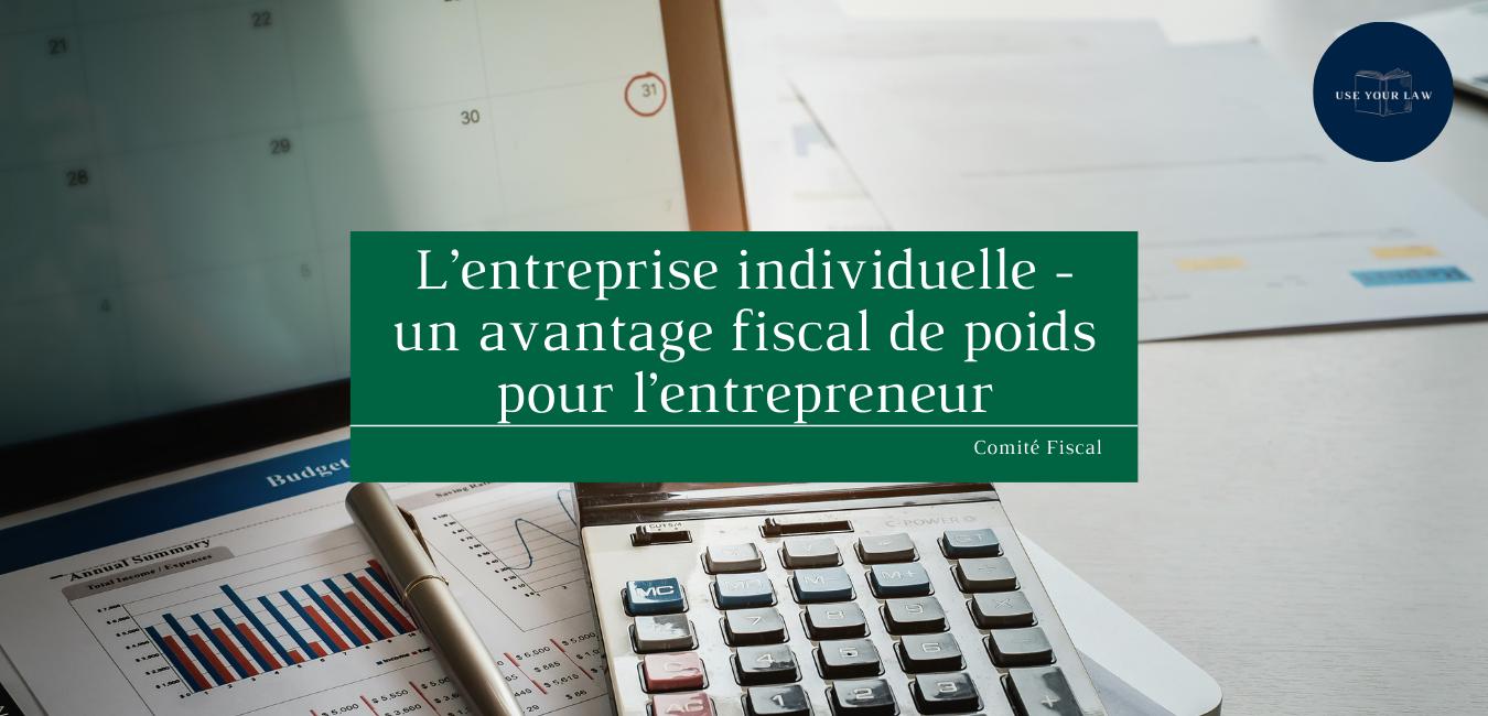 L'entreprise individuelle - un avantage fiscal de poids pour l'entrepreneur