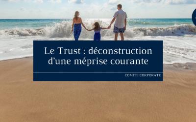 Le Trust : déconstruction d'une méprise courante