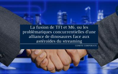 La fusion de TF1 et M6, ou les problématiques concurrentielles d'une alliance de dinosaures face aux astéroïdes du streaming